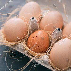Fresh local free range eggs